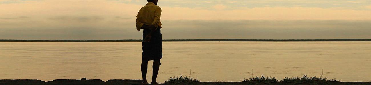 Filme | O homem que plantou uma floresta maior que o Central Park