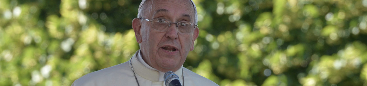 Muso Verde | Papa Francisco