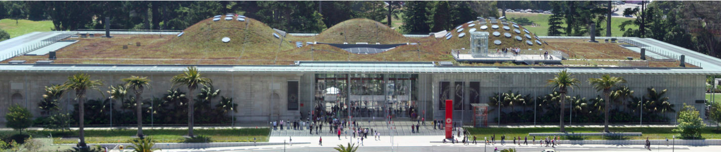 California Academy of Sciences | O prédio mais eco sustentável do mundo