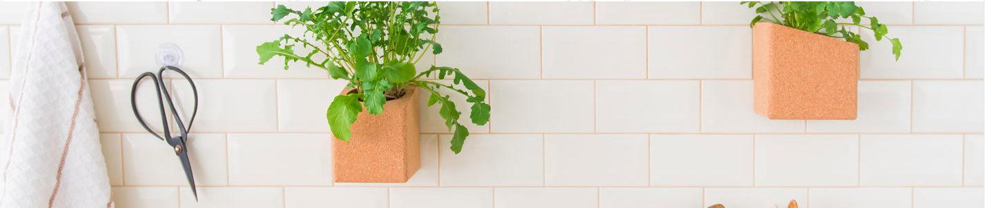 Horta em casa: 8 dicas de como fazer uma certeira!