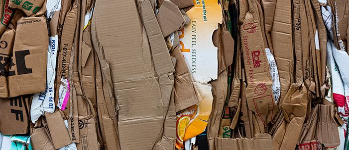 Uma iniciativa parananese pro pós consumo das embalagens