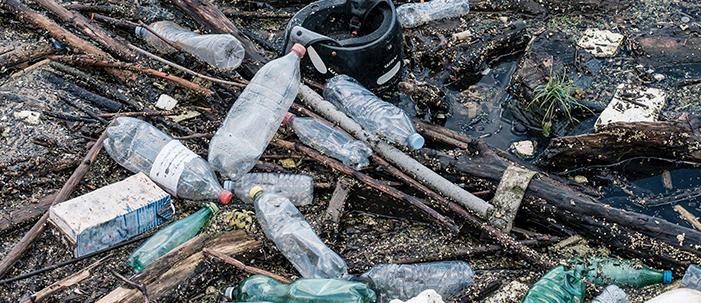 Como o plástico é nocivo pra nossa saúde?