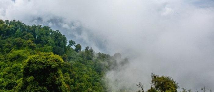 Amazônia e os rios voadores