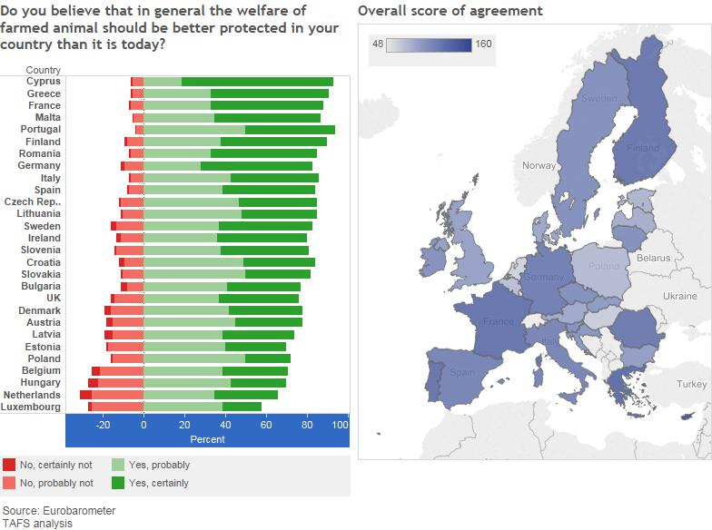 Infographic about public opinion on animal welfare in Europe.