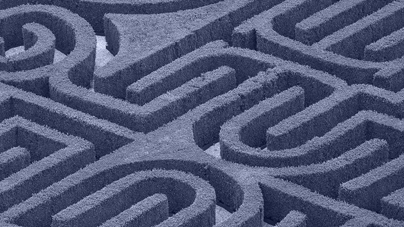 top perspective on a maze garden