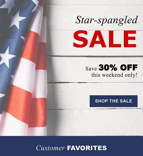American Holiday Email Newsletter Template from Seguno