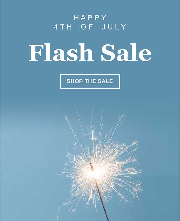 4th of July Email Newsletter Template from Seguno