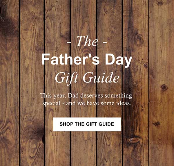 Father's Day Email Newsletter Template from Seguno