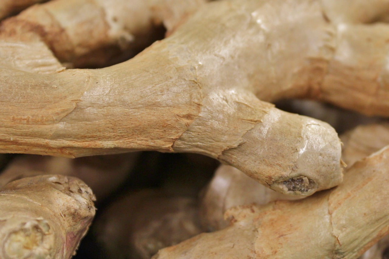 Ginger Essential Oil: ginger root