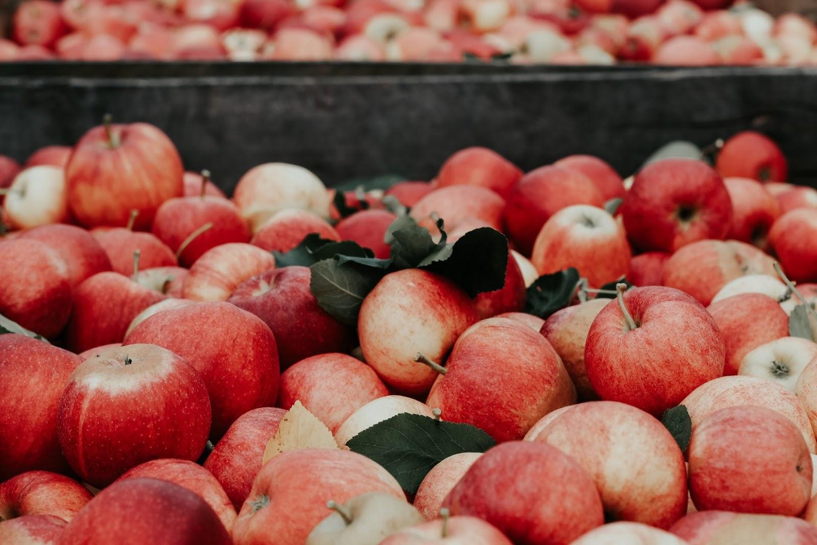 Apple Cider Vinegar Vs. White Vinegar: apples