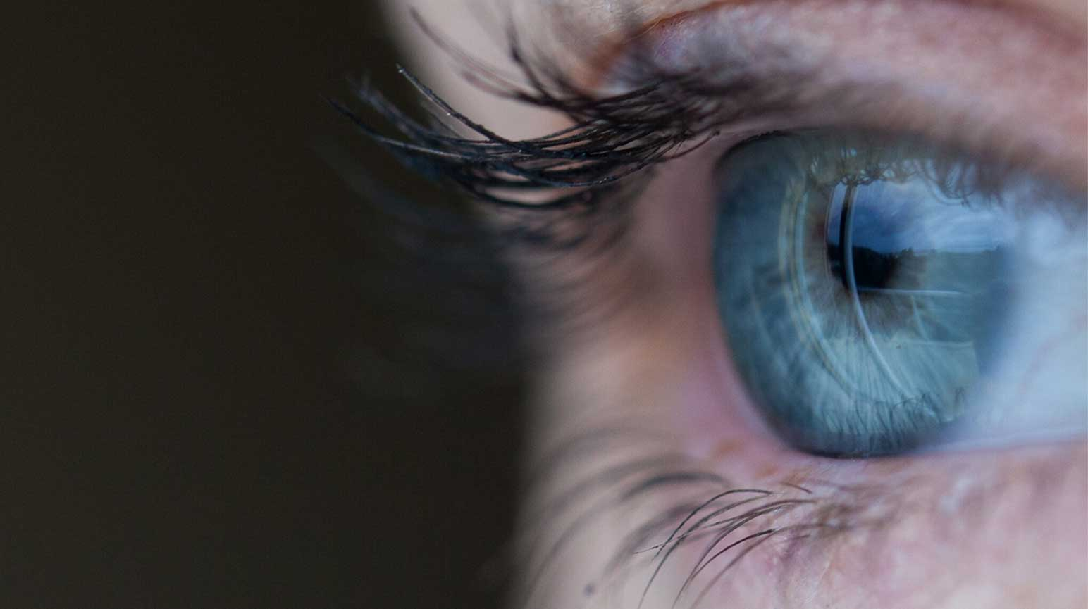 How We Lose Vision