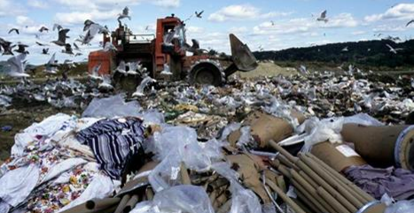 Trash in Our Landfills