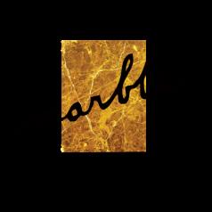 Logo Marble Technics Paris