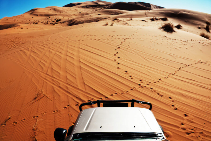 desert safari activity in UAE for international students
