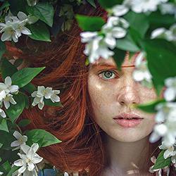 Artego_botanical_henne