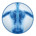 Dietze and Logan Spine Specialists logo image