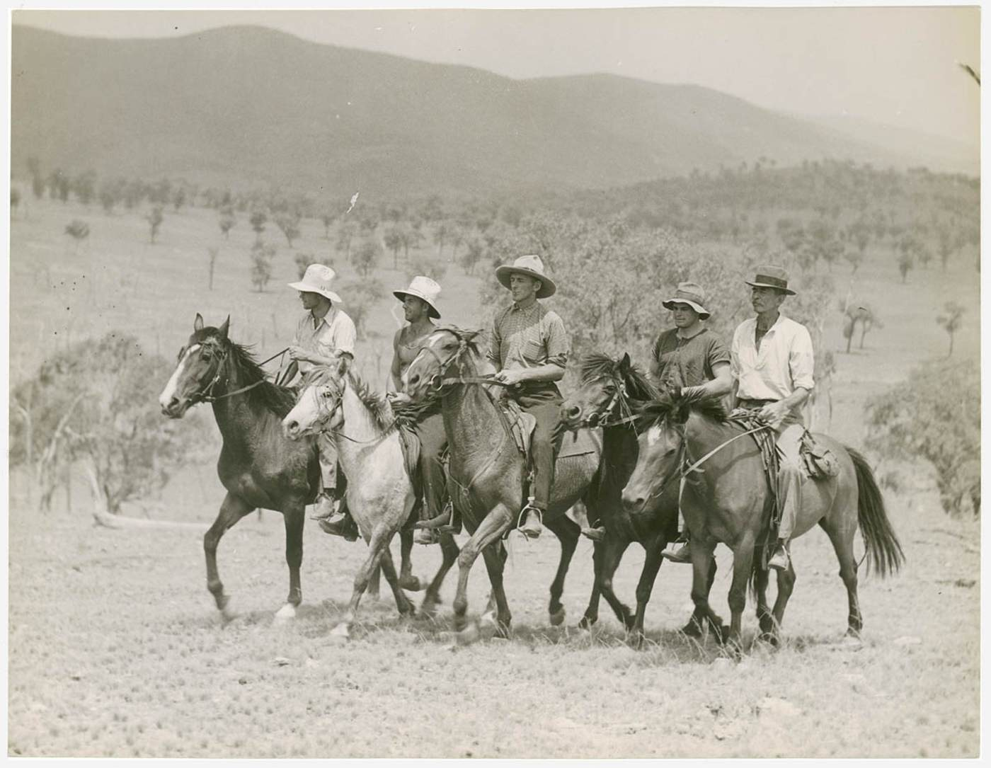 Sheep station drovers on horse back