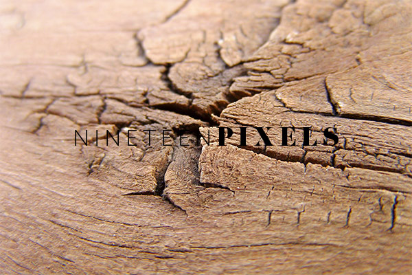 things stock Photo collection by nineteenpixels