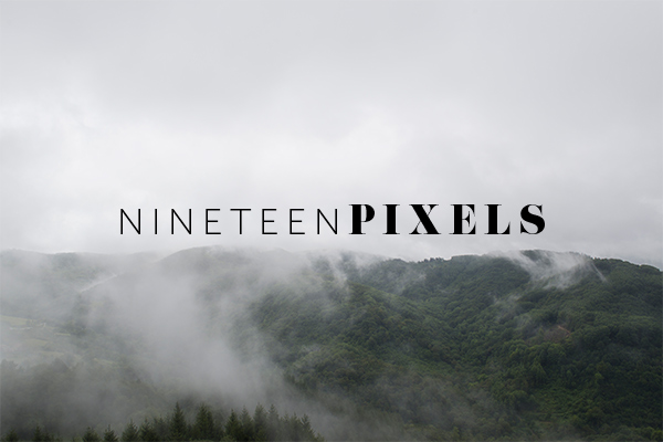 forest stock photos by nineteenpixels