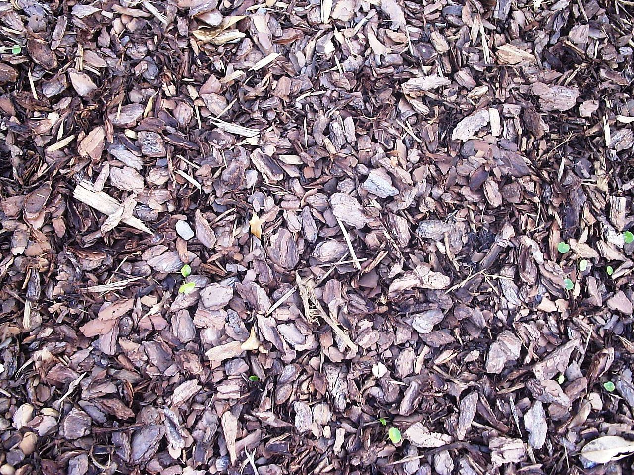 Mulch Pads (50/bundle)