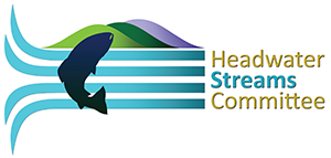 Headwater Streams Committee Logo