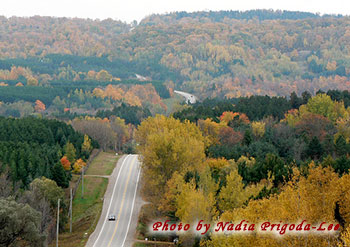 Hockley Valley. Photo Credit: Nadia Prigoda-Lee