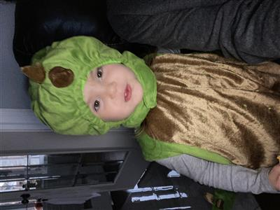 Child in Halloween costume: dinosaur