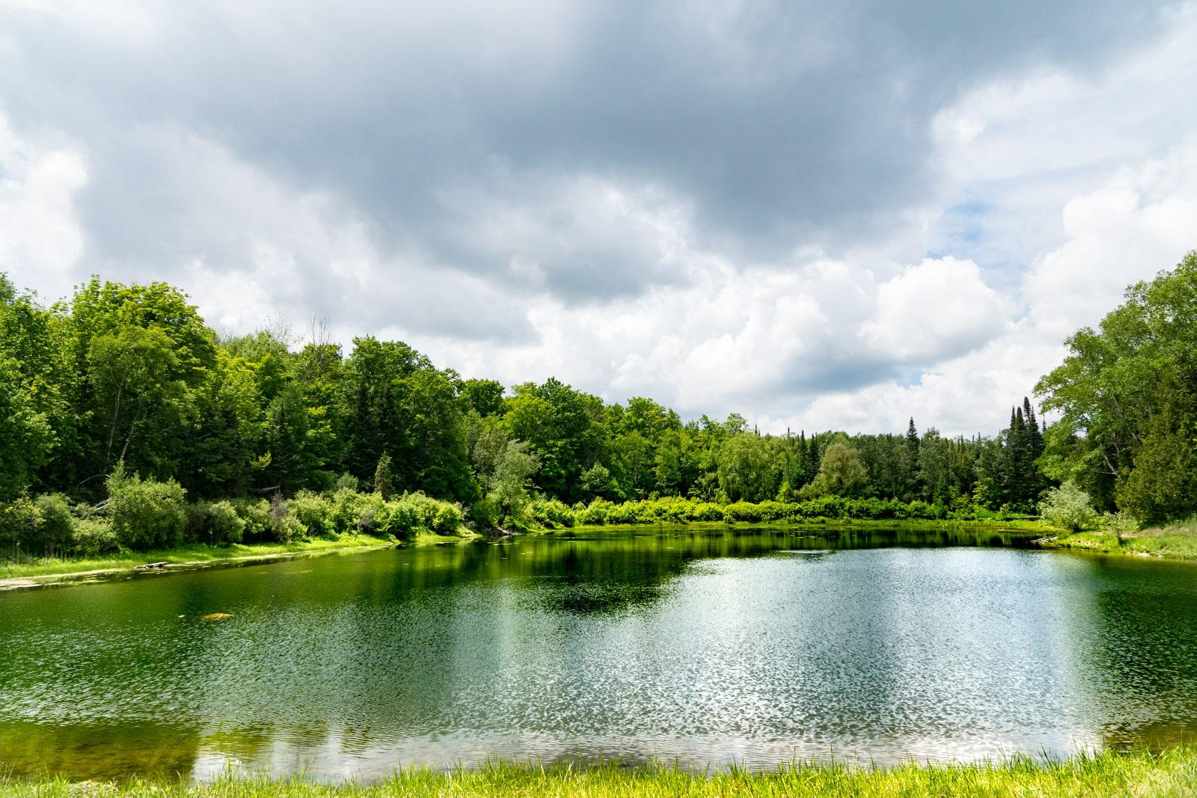 Pond at Monora Park