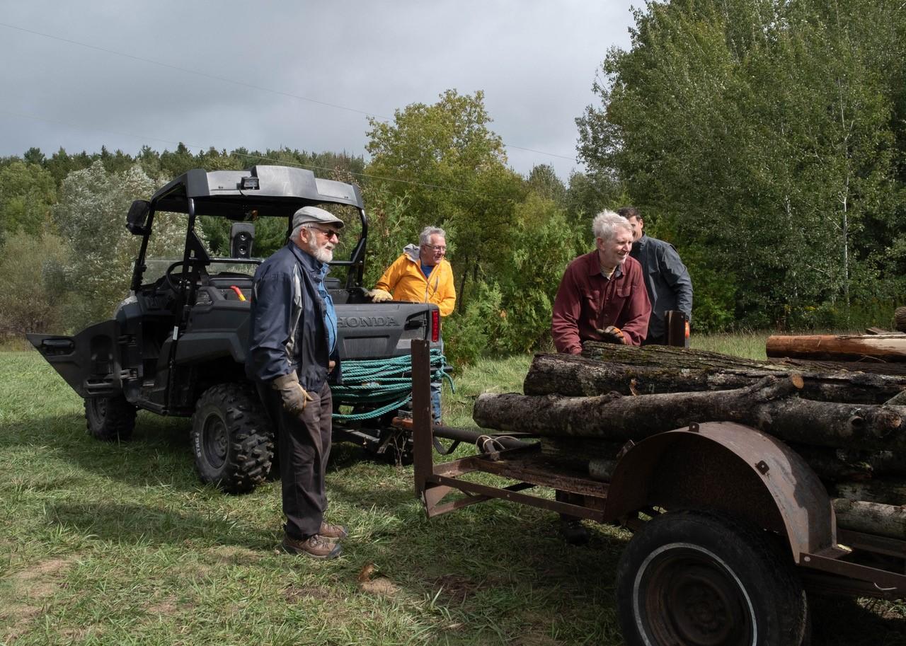 Volunteers with dead ash trees