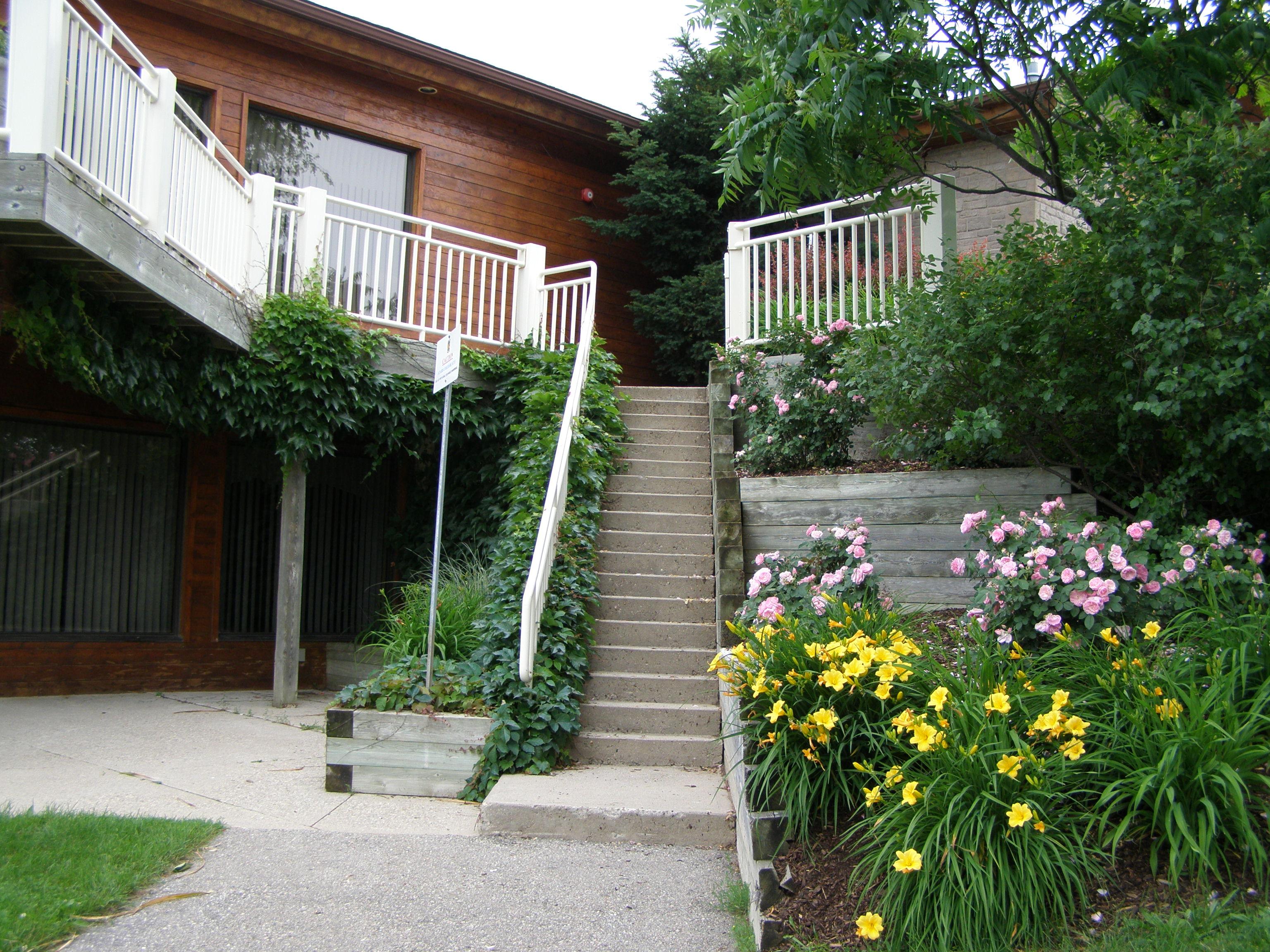 Monora Park Pavilion Steps