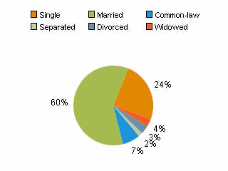 Census marital status pie chart