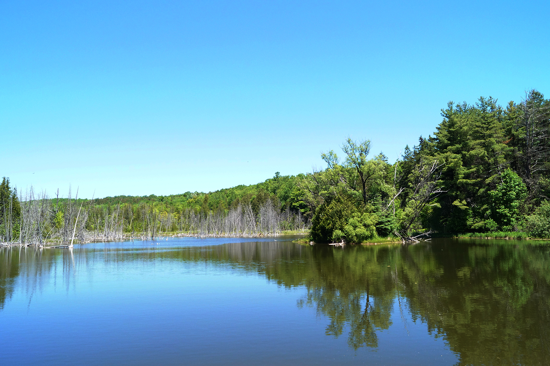 Scenic water at Mono Cliffs Provincial Park