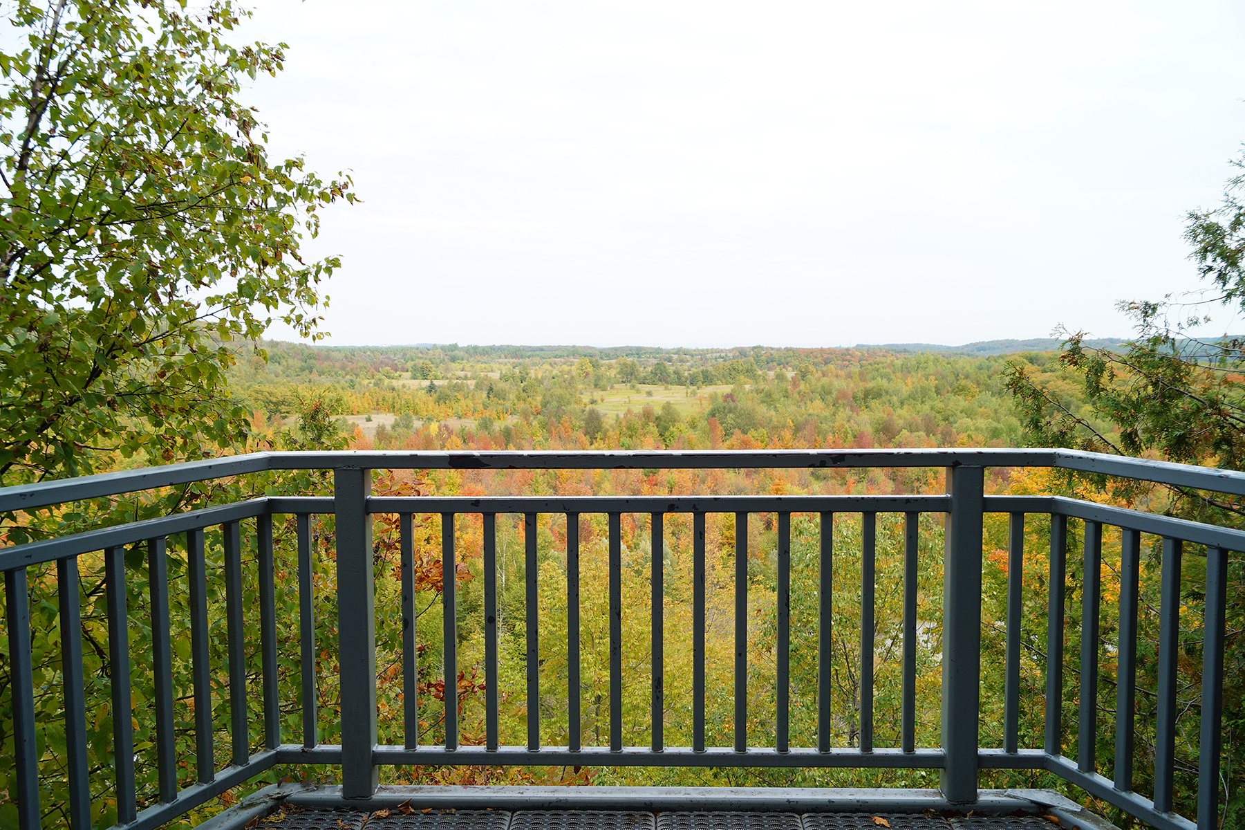 Lookout section at Mono Cliffs Provincial Park