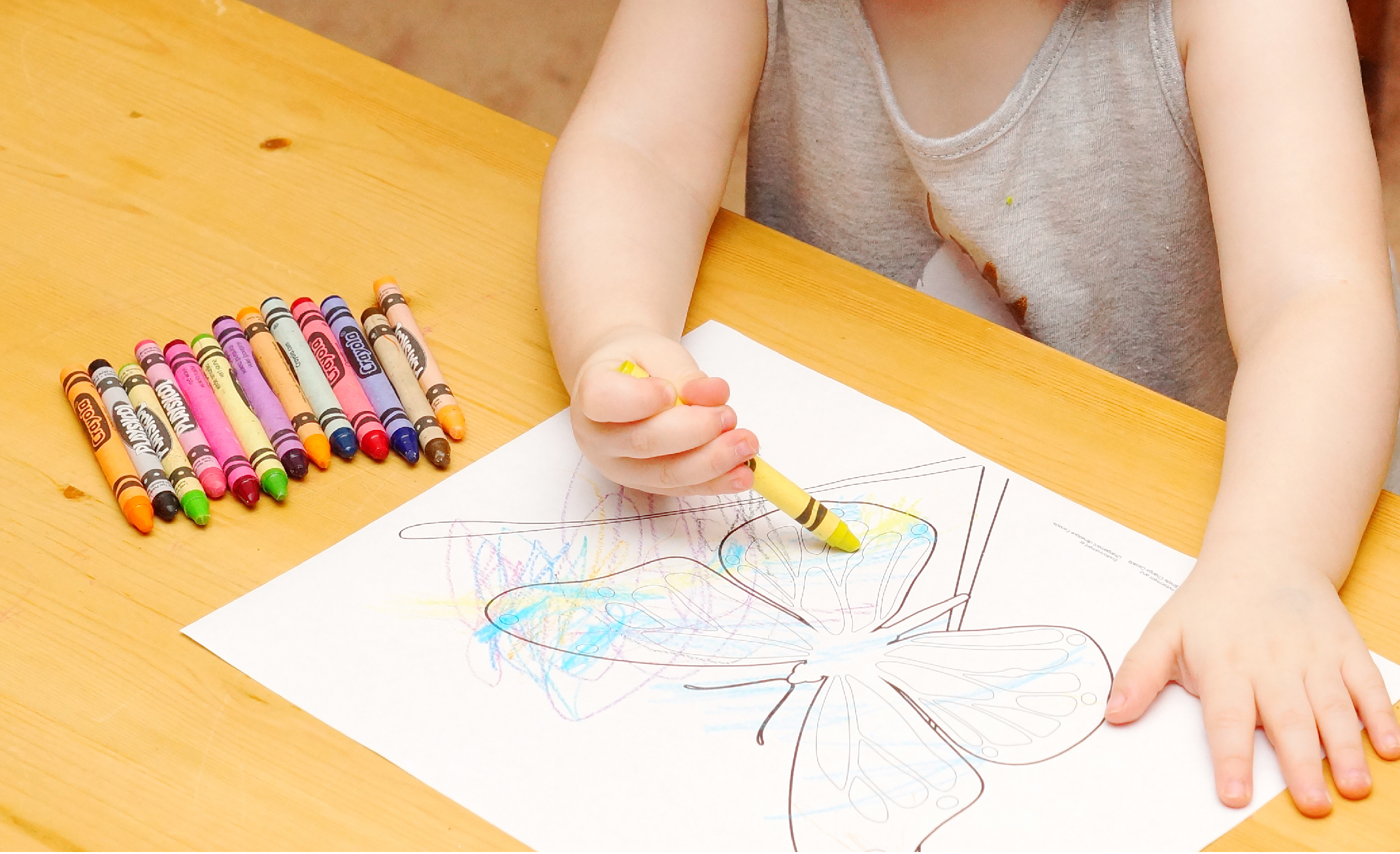 Child using crayon to colour a picture of a butterfly