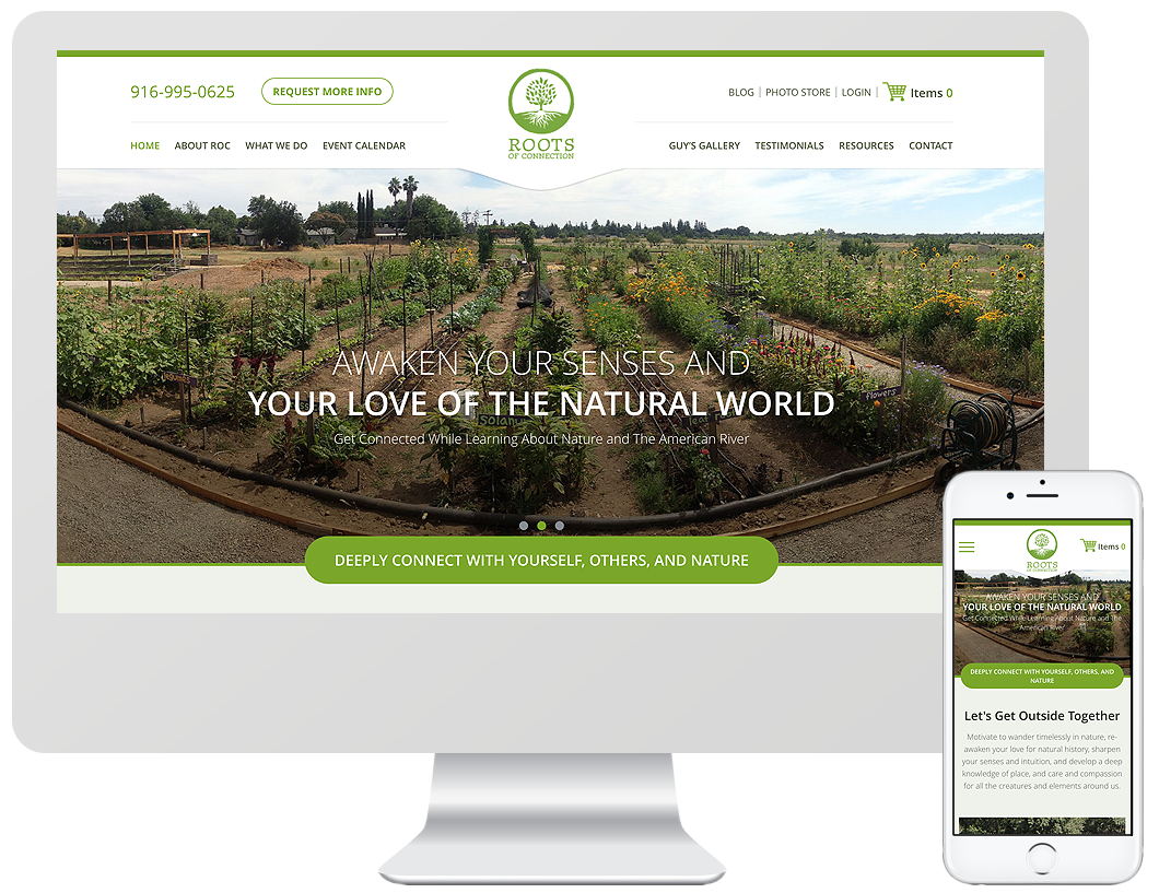 Website home page design for Roots of Connection