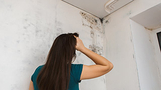 absolute duct and chimney cleaning offers 2 million in liability insurance