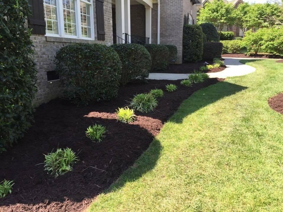 Shrub Fertilization Services In Spartanburg & Greenville, SC