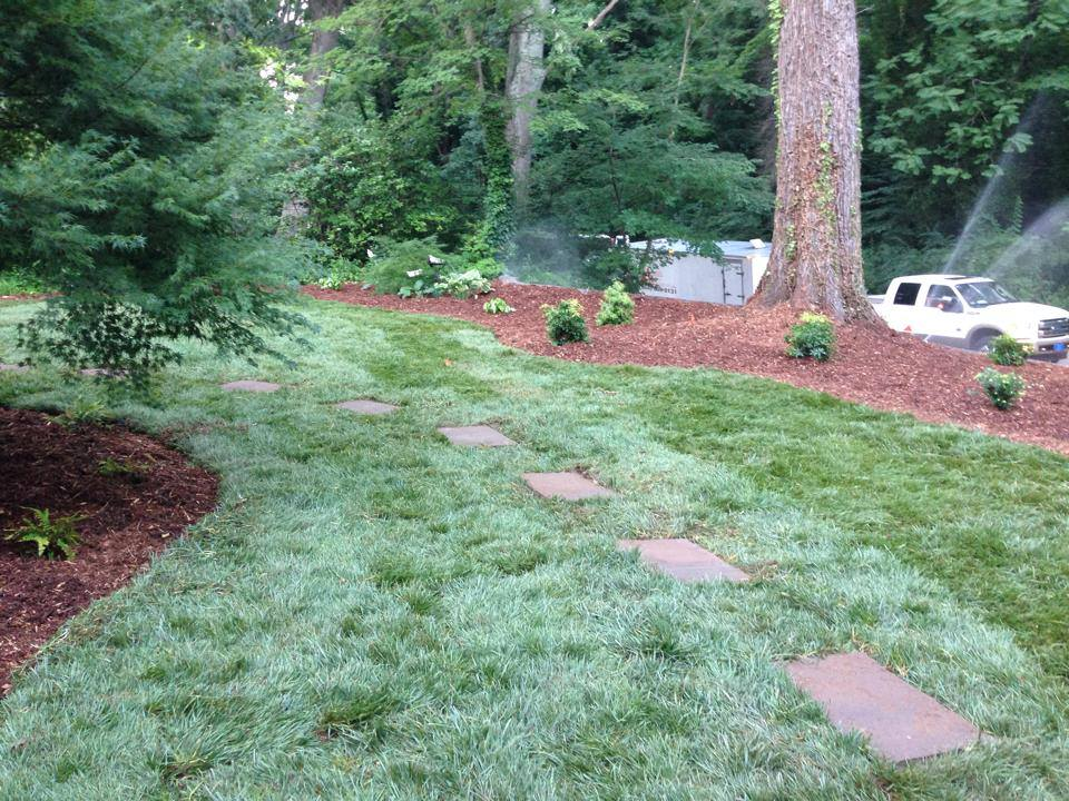 Core Aeration Services In Spartanburg & Greenville, SC