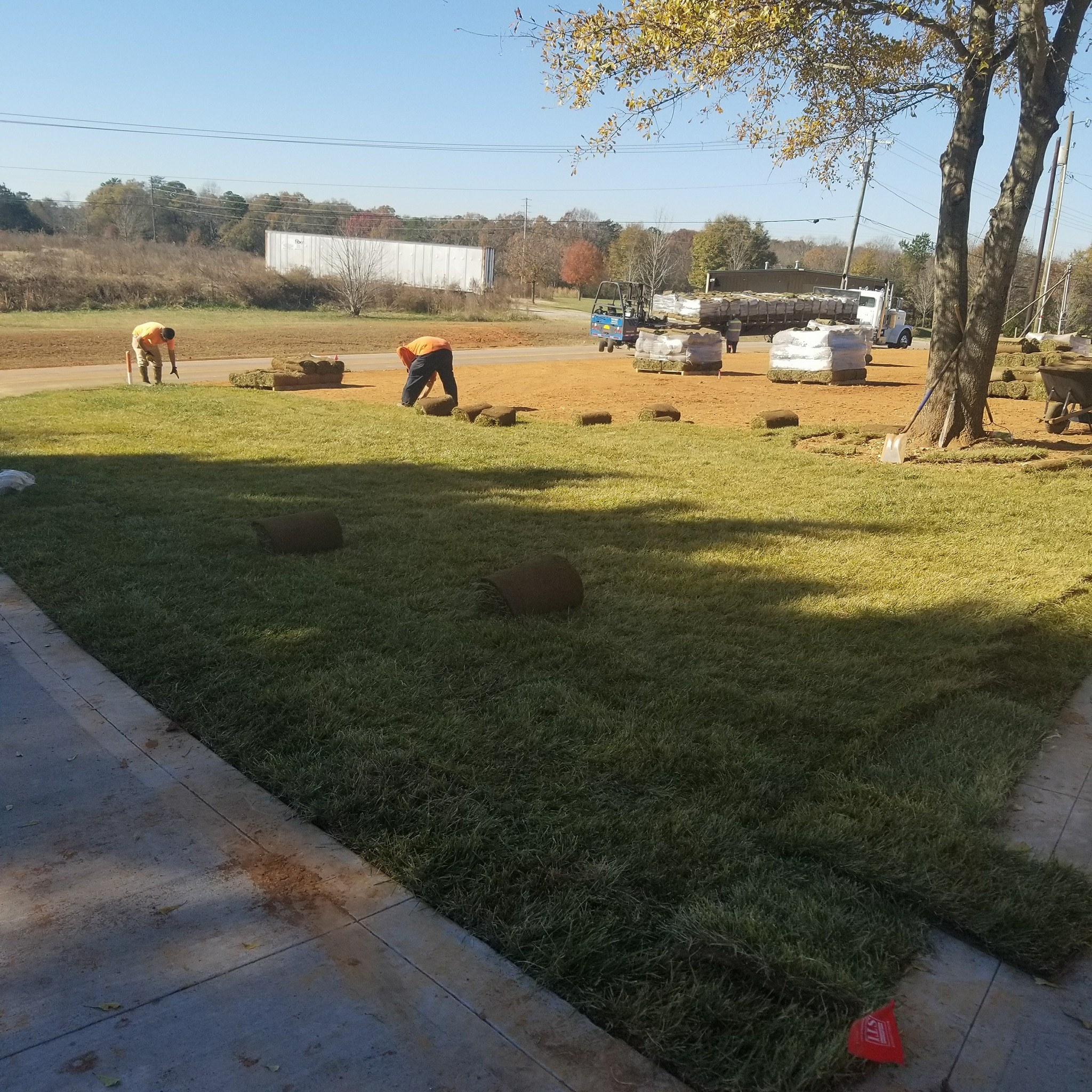 Sod Installation Services In Spartanburg & Greenville, SC