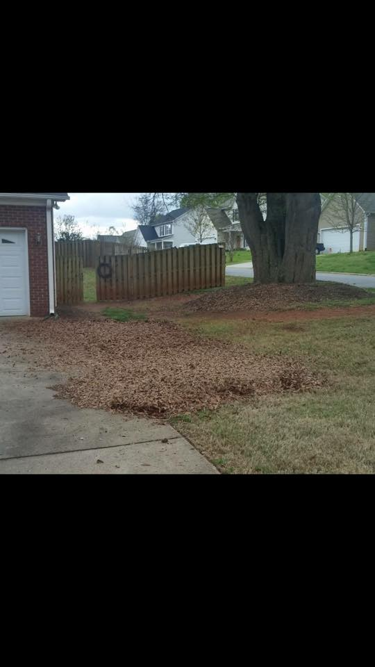 Leaf Removalo Services In Spartanburg & Greenville, SC