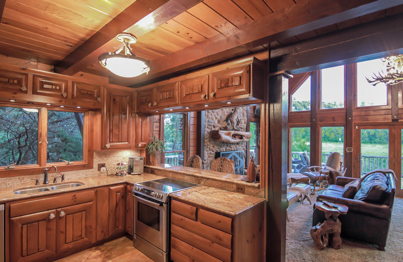 view of kitchen and living area in log cabin