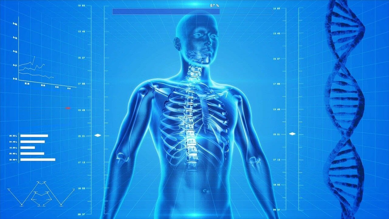 blue rendering man spine ribs DNA strand charts figures science