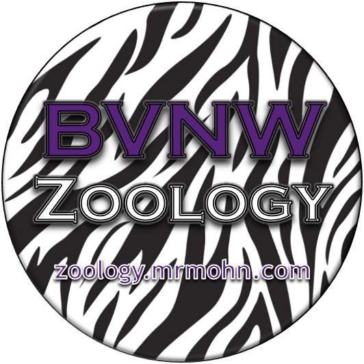 BVNW Zoology