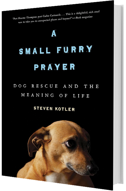 Steven Kotler | Small Furry Prayer