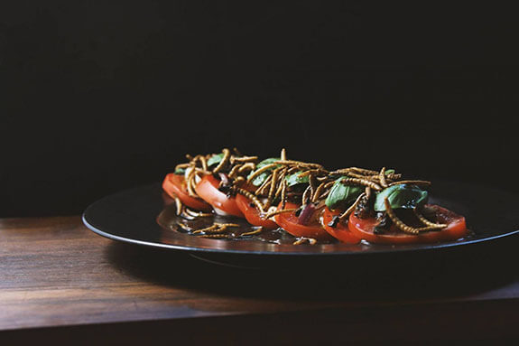 Edible insect Caprese salad