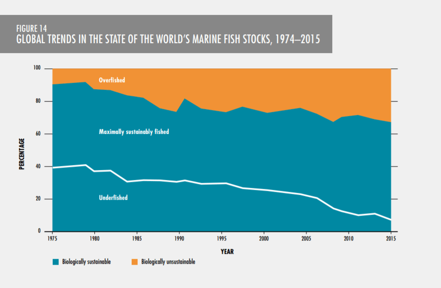Global trends in the state of the world's marine fish stock - More and more fish is being overfished