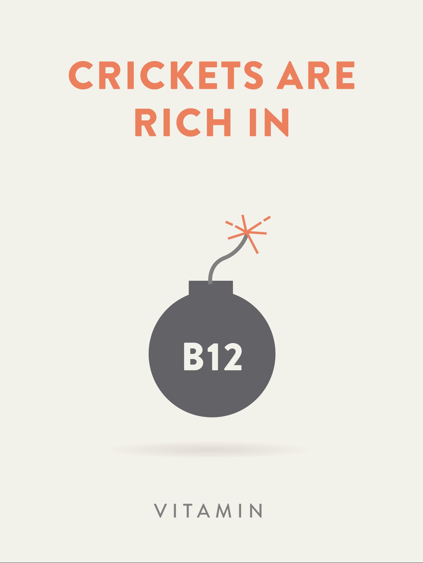 Vitamin B12 Bomb illustration