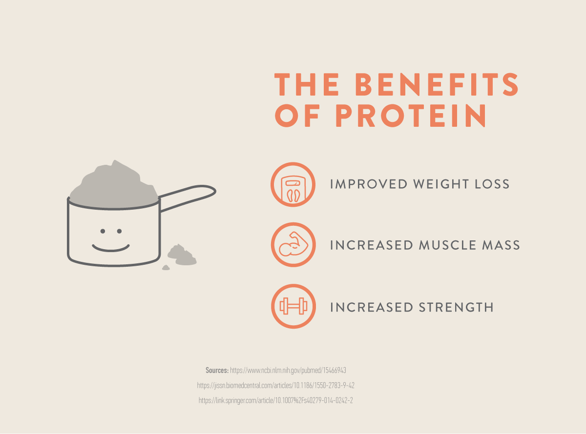 infographic: protein can help you loose weight, increase muscle mass and strength