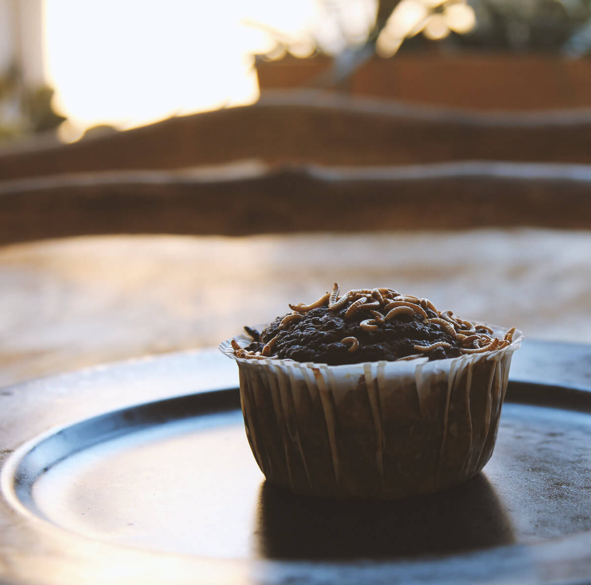 Cupcake with insects