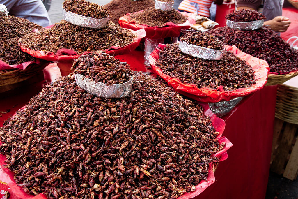 "Grasshoppers (""Chapulines"") sold on Mexican food market"